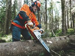 best gas chainsaw for homeowners