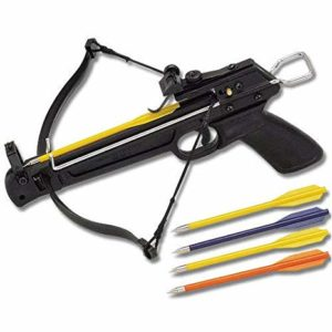 Best Crossbow For The Money & Crossbow Reviews for 2019